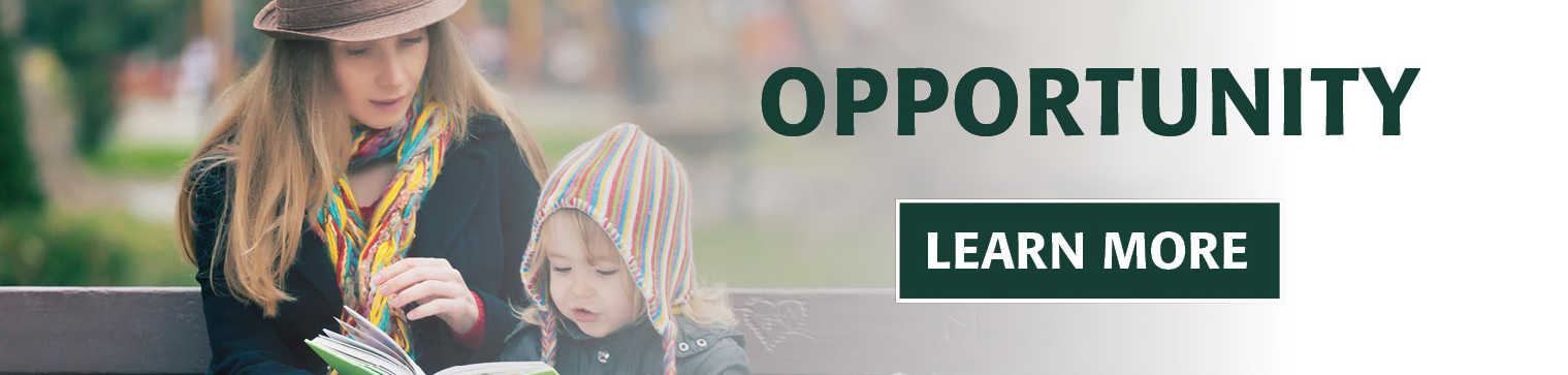 opportunity small banner