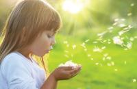 A little girl blows seeds from her hands into bright sunshine.