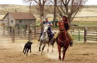 Two female ropers on horseback go after a calf.