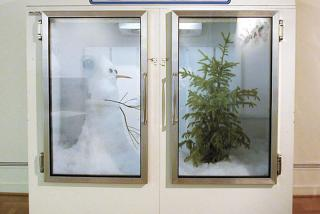 Glass refrigerator doors, one with a snowman, one with a tree