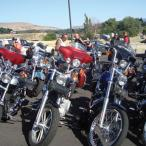 A row of motorcycles